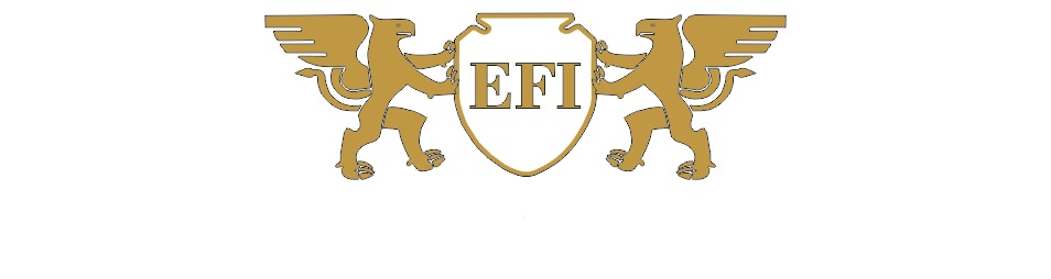 EFIGARANT GROUP